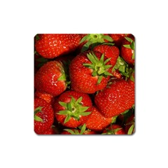 Strawberry  Magnet (square)