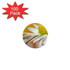 Daisy With Drops 1  Mini Button Magnet (100 Pack) by Siebenhuehner