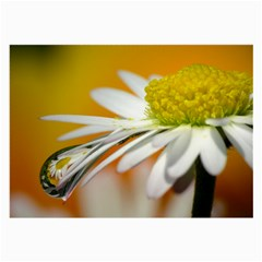Daisy With Drops Glasses Cloth (large) by Siebenhuehner