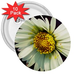 Daisy 3  Button (10 Pack) by Siebenhuehner