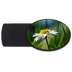Daisy 4gb Usb Flash Drive (oval) by Siebenhuehner
