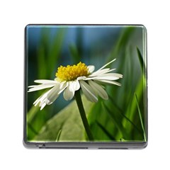 Daisy Memory Card Reader With Storage (square) by Siebenhuehner
