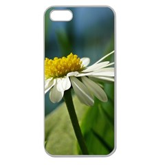 Daisy Apple Seamless Iphone 5 Case (clear) by Siebenhuehner