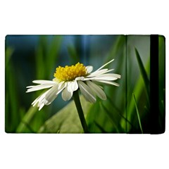 Daisy Apple Ipad 3/4 Flip Case by Siebenhuehner