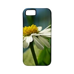 Daisy Apple Iphone 5 Classic Hardshell Case (pc+silicone) by Siebenhuehner