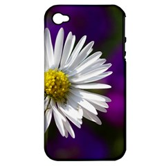 Daisy Apple Iphone 4/4s Hardshell Case (pc+silicone) by Siebenhuehner