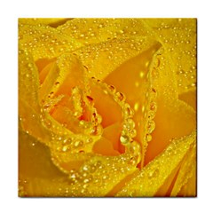 Waterdrops Ceramic Tile by Siebenhuehner