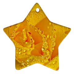Waterdrops Star Ornament by Siebenhuehner