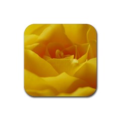 Yellow Rose Drink Coaster (square) by Siebenhuehner