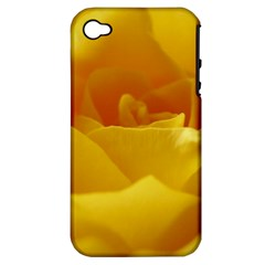 Yellow Rose Apple Iphone 4/4s Hardshell Case (pc+silicone) by Siebenhuehner