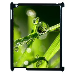 Waterdrops Apple Ipad 2 Case (black)