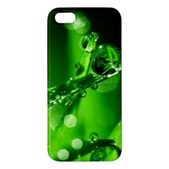 Waterdrops Iphone 5 Premium Hardshell Case by Siebenhuehner