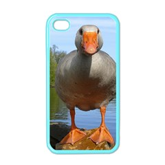 Geese Apple Iphone 4 Case (color) by Siebenhuehner