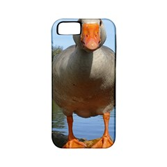 Geese Apple Iphone 5 Classic Hardshell Case (pc+silicone) by Siebenhuehner