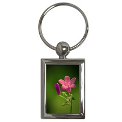 Campanula Close Up Key Chain (rectangle) by Siebenhuehner