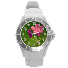 Campanula Close Up Plastic Sport Watch (large) by Siebenhuehner
