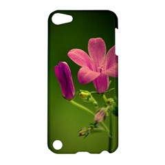 Campanula Close Up Apple Ipod Touch 5 Hardshell Case by Siebenhuehner