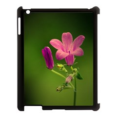 Campanula Close Up Apple Ipad 3/4 Case (black) by Siebenhuehner