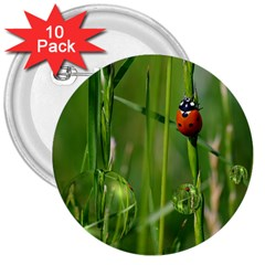 Ladybird 3  Button (10 Pack) by Siebenhuehner