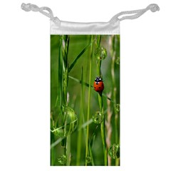Ladybird Jewelry Bag by Siebenhuehner