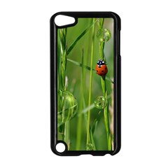 Ladybird Apple Ipod Touch 5 Case (black) by Siebenhuehner