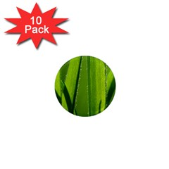 Grass 1  Mini Button Magnet (10 Pack) by Siebenhuehner