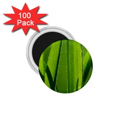 Grass 1 75  Button Magnet (100 Pack) by Siebenhuehner