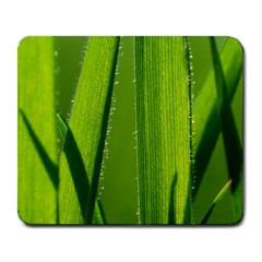Grass Large Mouse Pad (rectangle) by Siebenhuehner