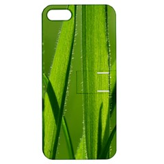 Grass Apple Iphone 5 Hardshell Case With Stand by Siebenhuehner