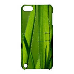 Grass Apple Ipod Touch 5 Hardshell Case With Stand by Siebenhuehner