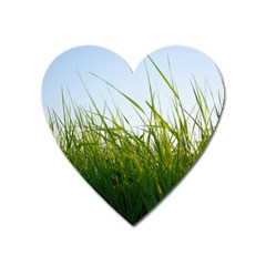 Grass Magnet (heart) by Siebenhuehner