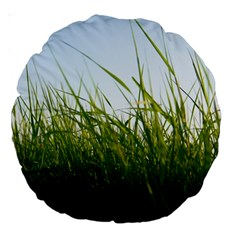 Grass 18  Premium Round Cushion  by Siebenhuehner