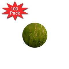 Grass 1  Mini Button Magnet (100 Pack) by Siebenhuehner