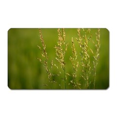 Grass Magnet (rectangular) by Siebenhuehner