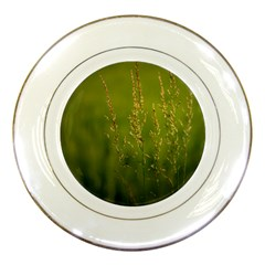 Grass Porcelain Display Plate by Siebenhuehner