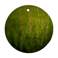 Grass Round Ornament (two Sides) by Siebenhuehner
