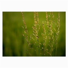 Grass Glasses Cloth (large) by Siebenhuehner