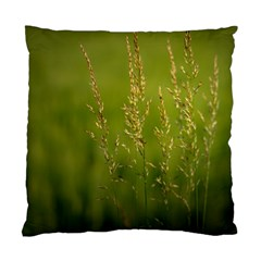 Grass Cushion Case (two Sided)  by Siebenhuehner