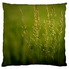 Grass Large Cushion Case (two Sided)  by Siebenhuehner