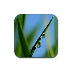 Waterdrops Drink Coaster (square) by Siebenhuehner