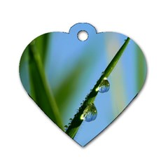 Waterdrops Dog Tag Heart (one Sided)  by Siebenhuehner