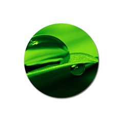 Green Drop Magnet 3  (round) by Siebenhuehner