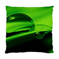 Green Drop Cushion Case (two Sided)  by Siebenhuehner