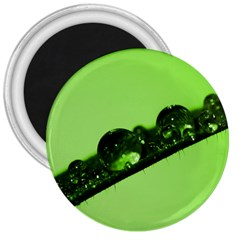 Green Drops 3  Button Magnet by Siebenhuehner