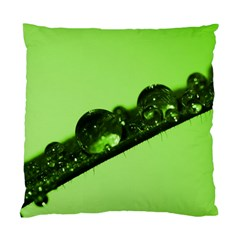 Green Drops Cushion Case (single Sided)  by Siebenhuehner