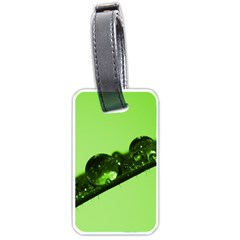 Green Drops Luggage Tag (one Side) by Siebenhuehner