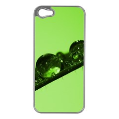 Green Drops Apple Iphone 5 Case (silver) by Siebenhuehner