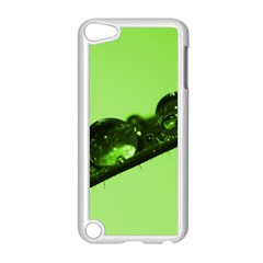 Green Drops Apple Ipod Touch 5 Case (white) by Siebenhuehner