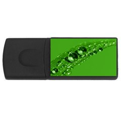 Green Drops 4gb Usb Flash Drive (rectangle) by Siebenhuehner
