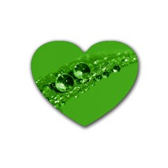 Green Drops Drink Coasters 4 Pack (heart)  by Siebenhuehner